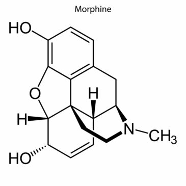 The Safety And Efficacy Of Morphine Vs. Fentanyl In The Pre-Hospital Setting:  A Critically Appraised Topic